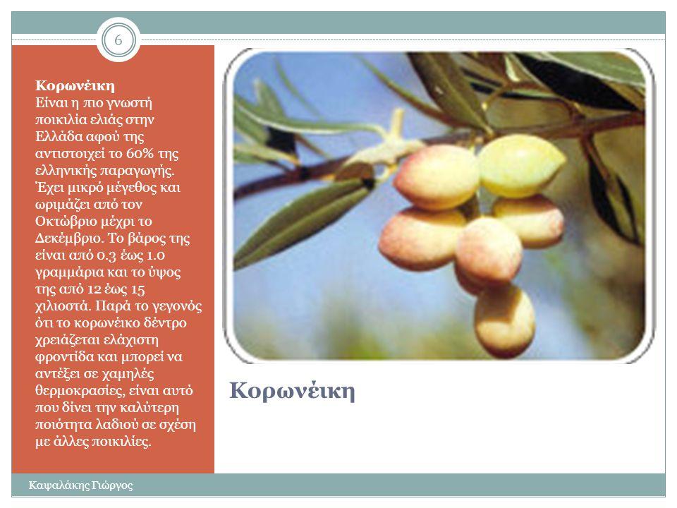 Η ελιά στην Ελλάδα http://www.karpea.gr/el/nutrition/olive-varieties 5 Καψαλάκης Γιώργος
