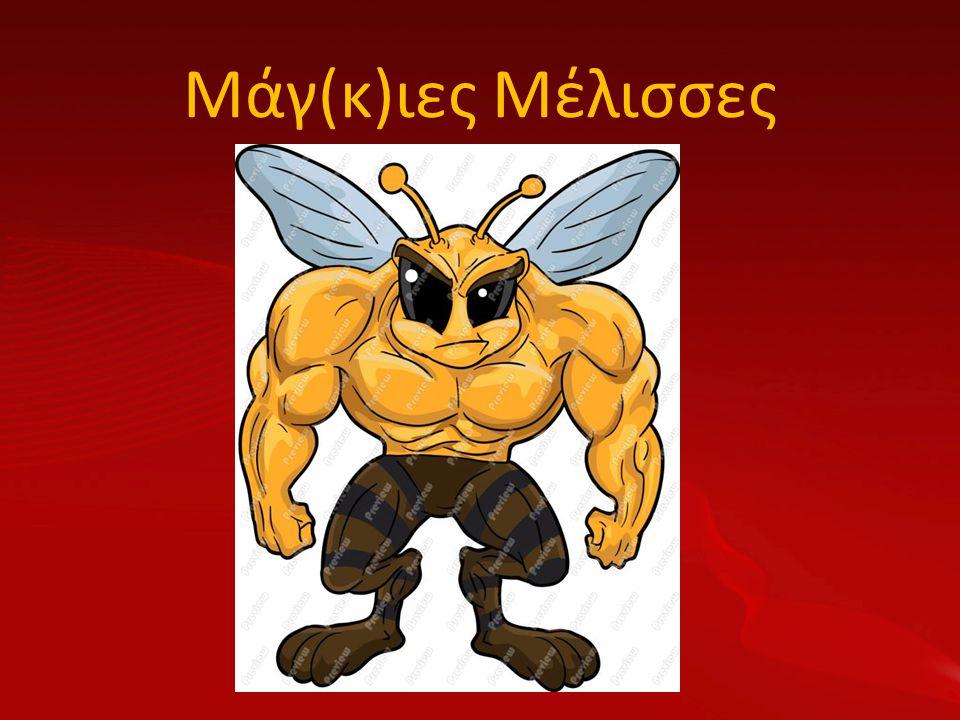 Μάγ(κ)ιες Μέλισσες