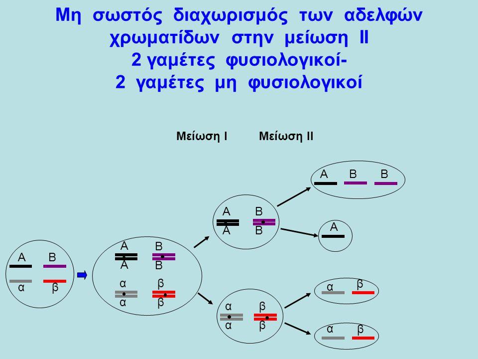 Α α Β β α β β α Α ΒΒΑ αβ αβ Α Β Α Β Α Α Β Β αβ αβ Μείωση Ι Μείωση ΙΙ Μη σωστός διαχωρισμός των αδελφών χρωματίδων στην μείωση ΙΙ 2 γαμέτες φυσιολογικοί- 2 γαμέτες μη φυσιολογικοί