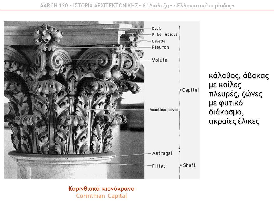AARCH 120 – ΙΣΤΟΡΙΑ ΑΡΧΙΤΕΚΤΟΝΙΚΗΣ – 6 η Διάλεξη – «Ελληνιστική περίοδος» Κορινθιακό κιονόκρανο Corinthian Capital κάλαθος, άβακας με κοίλες πλευρές,