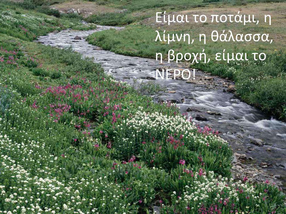 Είμαι το ευλογημένο νερό που καθαρίζει την ψυχή του ανθρώπου, είμαι το νερό της βάφτισης.