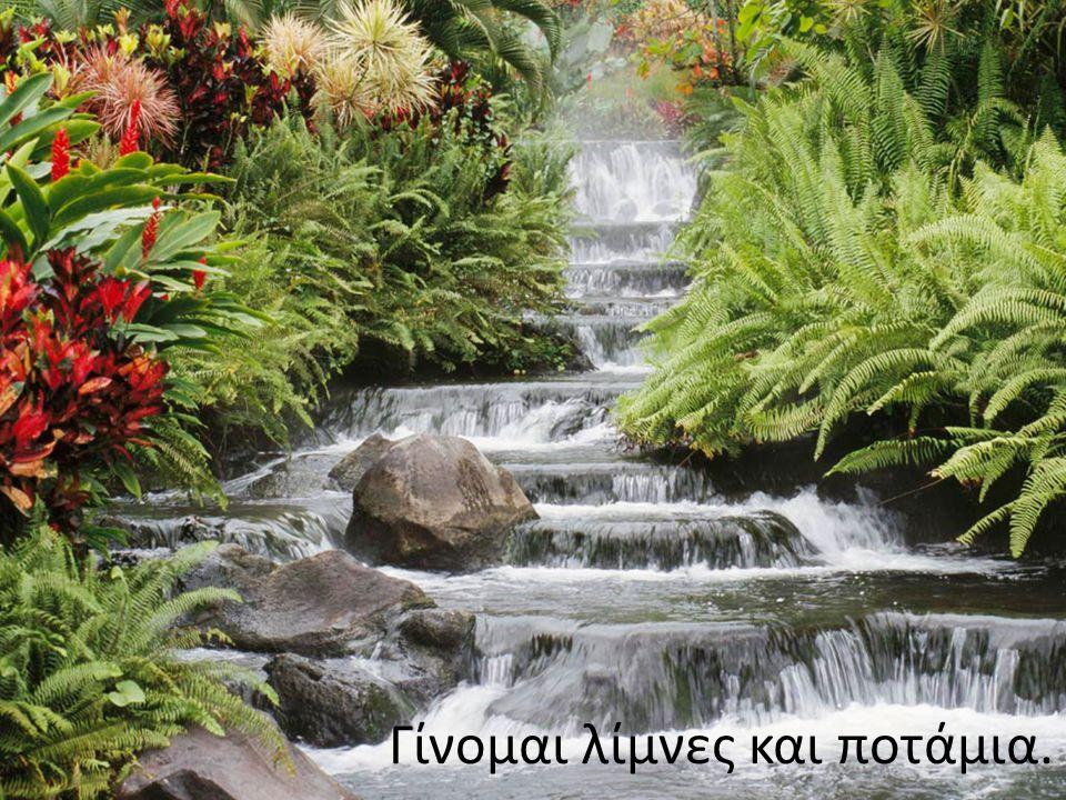 Τρέφω τις ρίζες των φυτών, που με ρουφούν με λαχτάρα, και πλουτίζω τη γη με νερό.