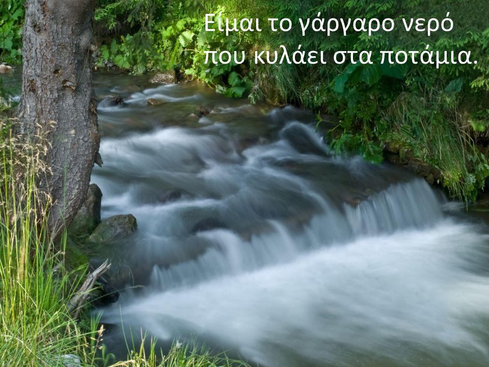 Είμαι το γάργαρο νερό που κυλάει στα ποτάμια.