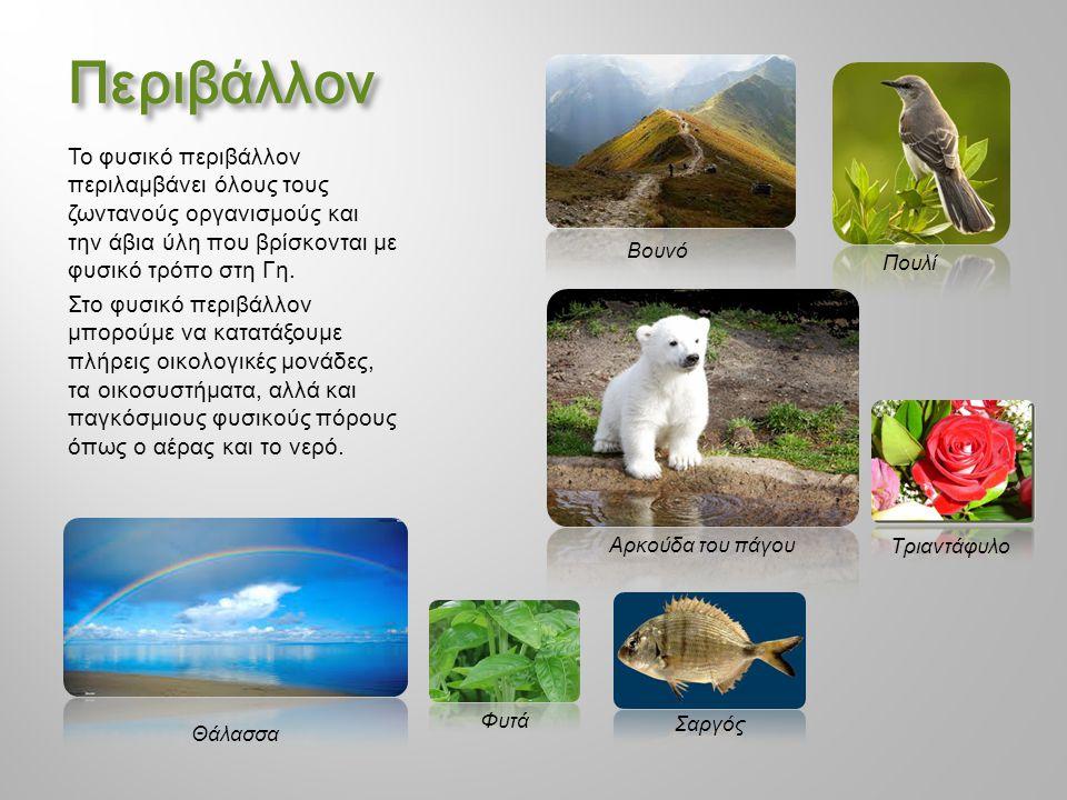 Περιβάλλον Το φυσικό περιβάλλον περιλαμβάνει όλους τους ζωντανούς οργανισμούς και την άβια ύλη που βρίσκονται με φυσικό τρόπο στη Γη. Στο φυσικό περιβ