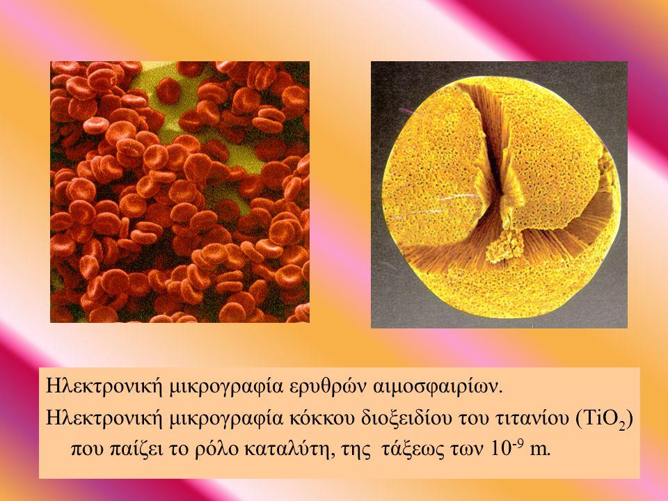 ΗΛΕΚΤΡΟΝΙΚΗ ΜΙΚΡΟΣΚΟΠΙΑ Ηλεκτρονική μικρογραφία κυτταρικής μεμβράνης.