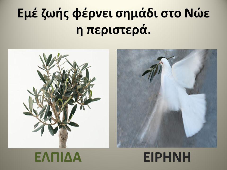 Εμέ ζωής φέρνει σημάδι στο Νώε η περιστερά. ΕΛΠΙΔΑΕΙΡΗΝΗ
