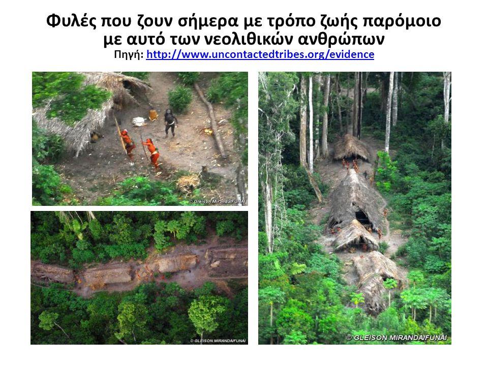 Φυλές που ζουν σήμερα με τρόπο ζωής παρόμοιο με αυτό των νεολιθικών ανθρώπων Πηγή: http://www.uncontactedtribes.org/evidencehttp://www.uncontactedtrib