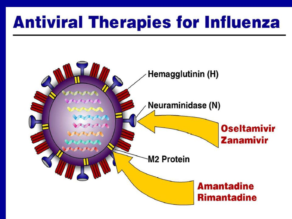 Inactivated Influenza Vaccine Efficacy 70%-90% effective among healthy persons <65 years of age 30%-40% effective among frail elderly persons 50%-60% effective in preventing hospitalization 80% effective in preventing death
