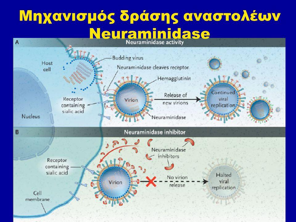 ΣΥΜΠΕΡΑΣΜΑ Η παρατεταμένης διάρκειας χημειοπροφύλαξη με zanamivir ή oseltamivir εμφανίζονται να είναι ιδιαίτερα αποτελεσματική για την πρόληψη της συμπτωματικής γρίπης μεταξύ των λευκών και ιαπώνων ενηλίκων με ανοσολογική ανεπάρκεια Η παρατεταμένης διάρκειας χρήση oseltamivir συνδέεται με αυξημένη επλιπτωση ναυτίας και εμέτου.