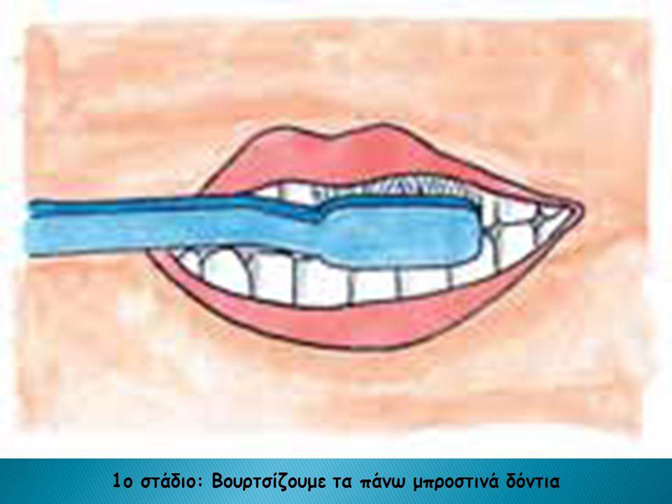 1ο στάδιο: Βουρτσίζουμε τα πάνω μπροστινά δόντια