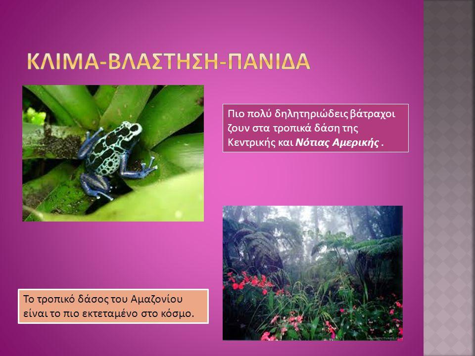  Στην περιοχή των Άνδεων, η βλάστηση έχει το χαρακτήρα της βλάστησης των ψυχρών κλιμάτων και λίγα είδη έχουν προσαρμοστεί να ζουν στις ακραίες κλιματικές συνθήκες.
