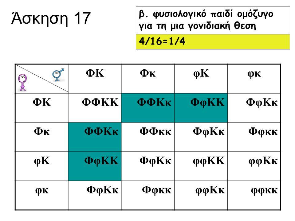 Άσκηση 17 β. φυσιολογικό παιδί ομόζυγο για τη μια γονιδιακή θεση 4/16=1/4 ΦΚΦκφΚφκ ΦΚΦΦΚΚΦΦΚκΦφΚΚΦφΚκ ΦκΦΦΚκΦΦκκΦφΚκΦφκκ φΚΦφΚΚΦφΚκφφΚΚφφΚκ φκΦφΚκΦφκκ