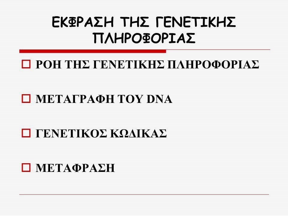 ΕΚΦΡΑΣΗ ΤΗΣ ΓΕΝΕΤΙΚΗΣ ΠΛΗΡΟΦΟΡΙΑΣ  ΡΟΗ ΤΗΣ ΓΕΝΕΤΙΚΗΣ ΠΛΗΡΟΦΟΡΙΑΣ  ΜΕΤΑΓΡΑΦΗ ΤΟΥ DNA  ΓΕΝΕΤΙΚΟΣ ΚΩΔΙΚΑΣ  ΜΕΤΑΦΡΑΣΗ