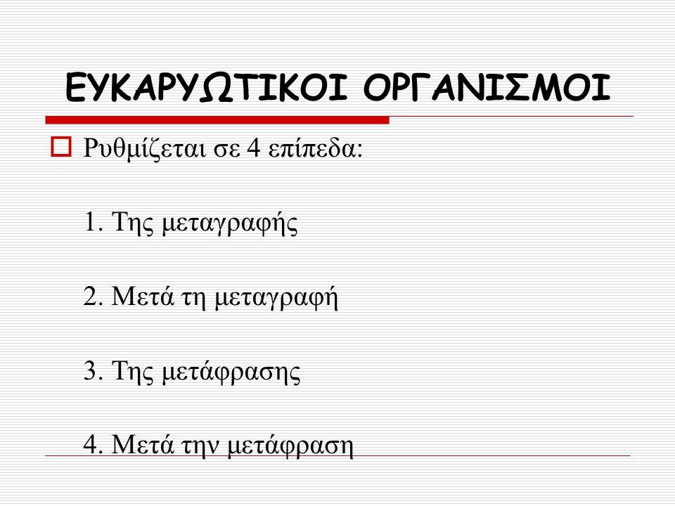 ΕΥΚΑΡΥΩΤΙΚΟΙ ΟΡΓΑΝΙΣΜΟΙ  Ρυθμίζεται σε 4 επίπεδα: 1. Της μεταγραφής 2. Μετά τη μεταγραφή 3. Της μετάφρασης 4. Μετά την μετάφραση