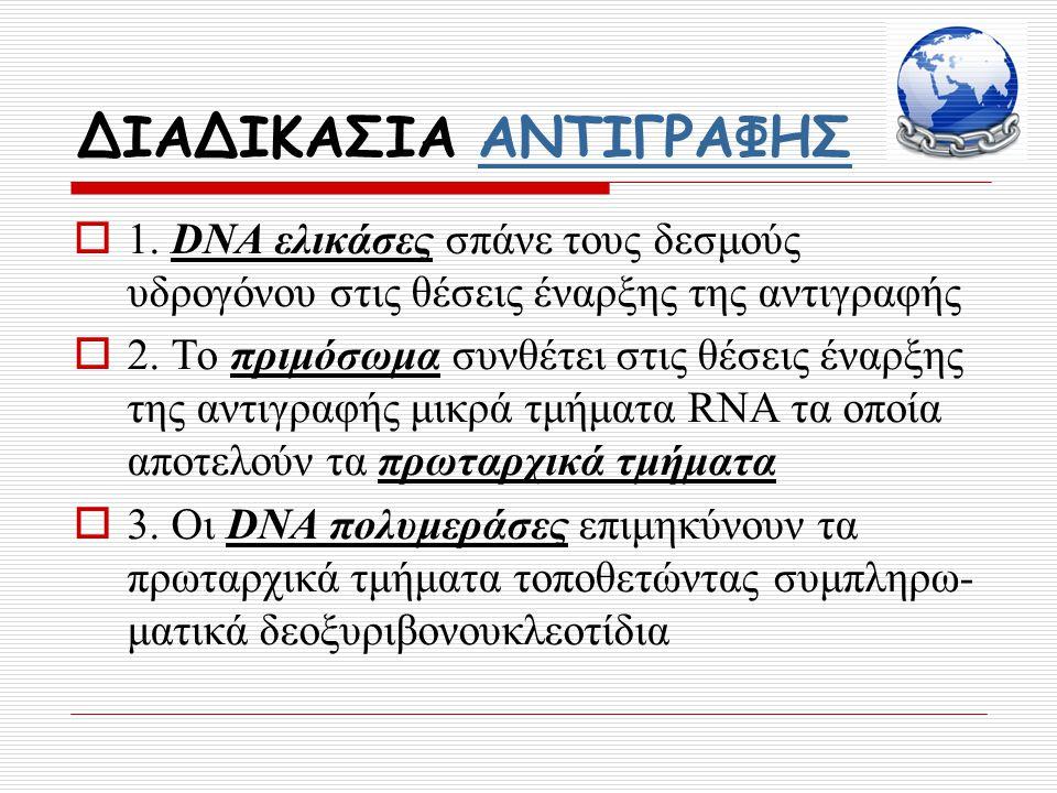 ΔΙΑΔΙΚΑΣΙΑ ΑΝΤΙΓΡΑΦΗΣΑΝΤΙΓΡΑΦΗΣ  1. DNA ελικάσες σπάνε τους δεσμούς υδρογόνου στις θέσεις έναρξης της αντιγραφής  2. Το πριμόσωμα συνθέτει στις θέσε