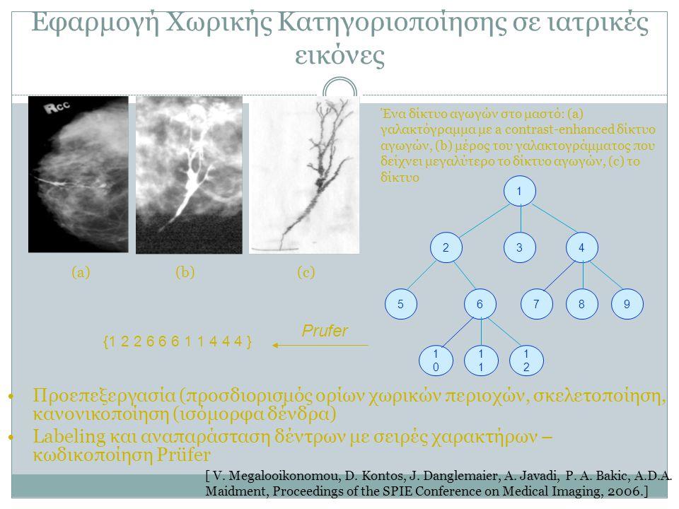 Εφαρμογή Χωρικής Κατηγοριοποίησης σε ιατρικές εικόνες Ένα δίκτυο αγωγών στο μαστό: (a) γαλακτόγραμμα με a contrast-enhanced δίκτυο αγωγών, (b) μέρος τ