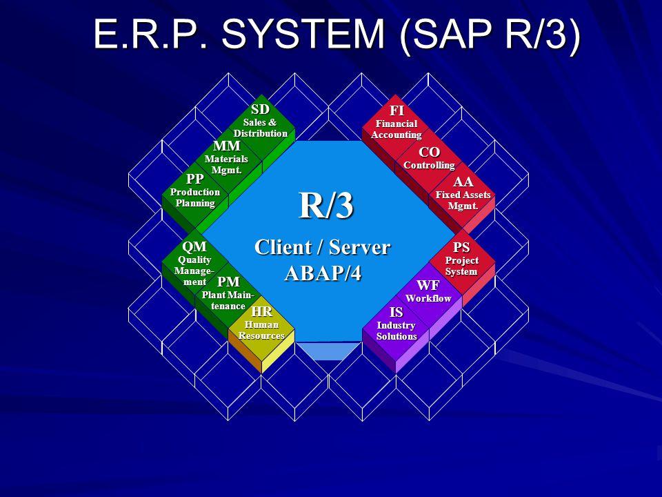 E.R.P. SYSTEM (SAP R/3) E.R.P.