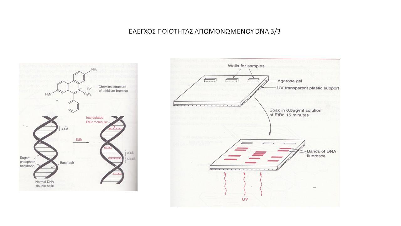 ΕΛΕΓΧΟΣ ΠΟΙΟΤΗΤΑΣ ΑΠΟΜΟΝΩΜΕΝΟΥ DNA 3/3
