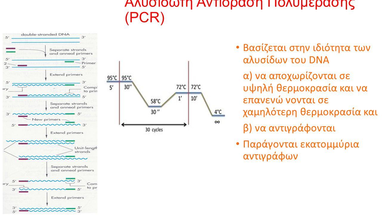 Αλυσιδωτή Αντίδραση Πολυμεράσης (PCR) Βασίζεται στην ιδιότητα των αλυσίδων του DNA α) να αποχωρίζονται σε υψηλή θερμοκρασία και να επανενώ νονται σε χαμηλότερη θερμοκρασία και β) να αντιγράφονται Παράγονται εκατομμύρια αντιγράφων