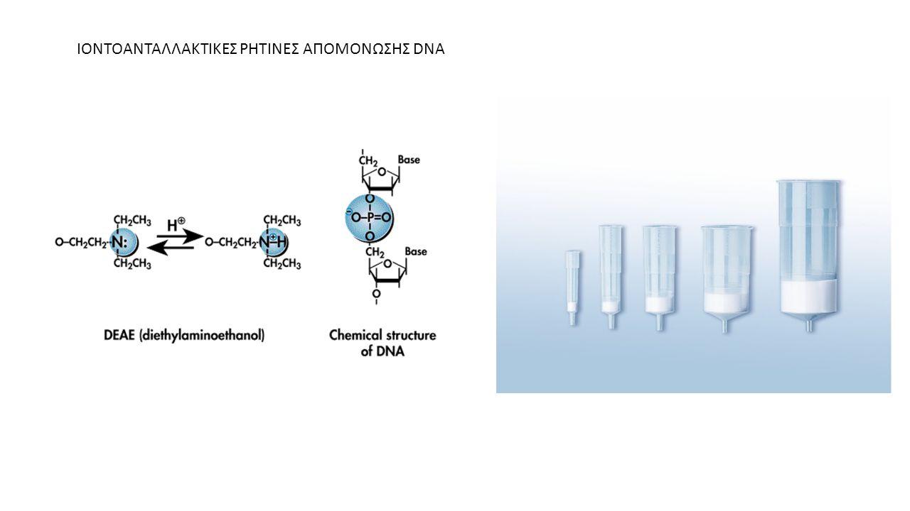 ΙΟΝΤΟΑΝΤΑΛΛΑΚΤΙΚΕΣ ΡΗΤΙΝΕΣ ΑΠΟΜΟΝΩΣΗΣ DNA