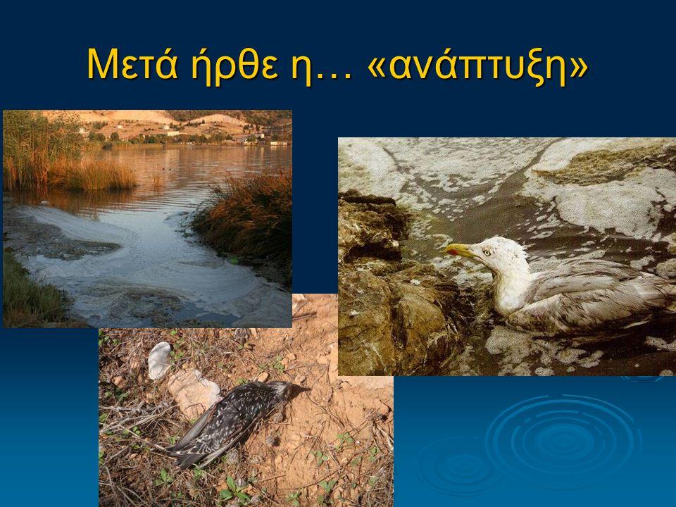 Προβλήματα  πολύ επιβαρυμένο μικρό οικοσύστημα  υψηλή τοξικότητα του ιζήματος από τη διαφυγή πετρελαιοειδών από τα διυλιστήρια  Μαζικοί θάνατοι ψαριών  Το σύστημα προειδοποιεί για επερχόμενη, μη ανατρέψιμη περιβαλλοντική καταστροφή.
