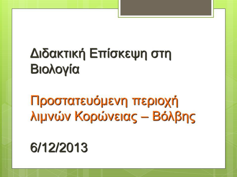 Διδακτική Επίσκεψη στη Βιολογία Προστατευόμενη περιοχή λιμνών Κορώνειας – Βόλβης 6/12/2013
