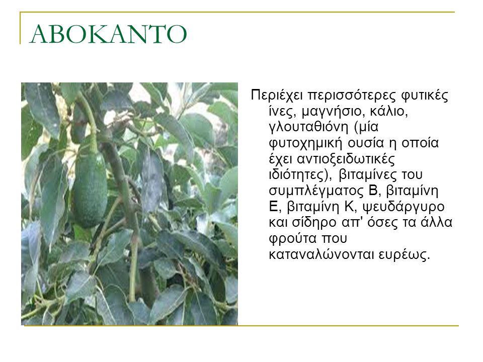 ΑΒΟΚΑΝΤΟ Περιέχει περισσότερες φυτικές ίνες, μαγνήσιο, κάλιο, γλουταθιόνη (μία φυτοχημική ουσία η οποία έχει αντιοξειδωτικές ιδιότητες), βιταμίνες του
