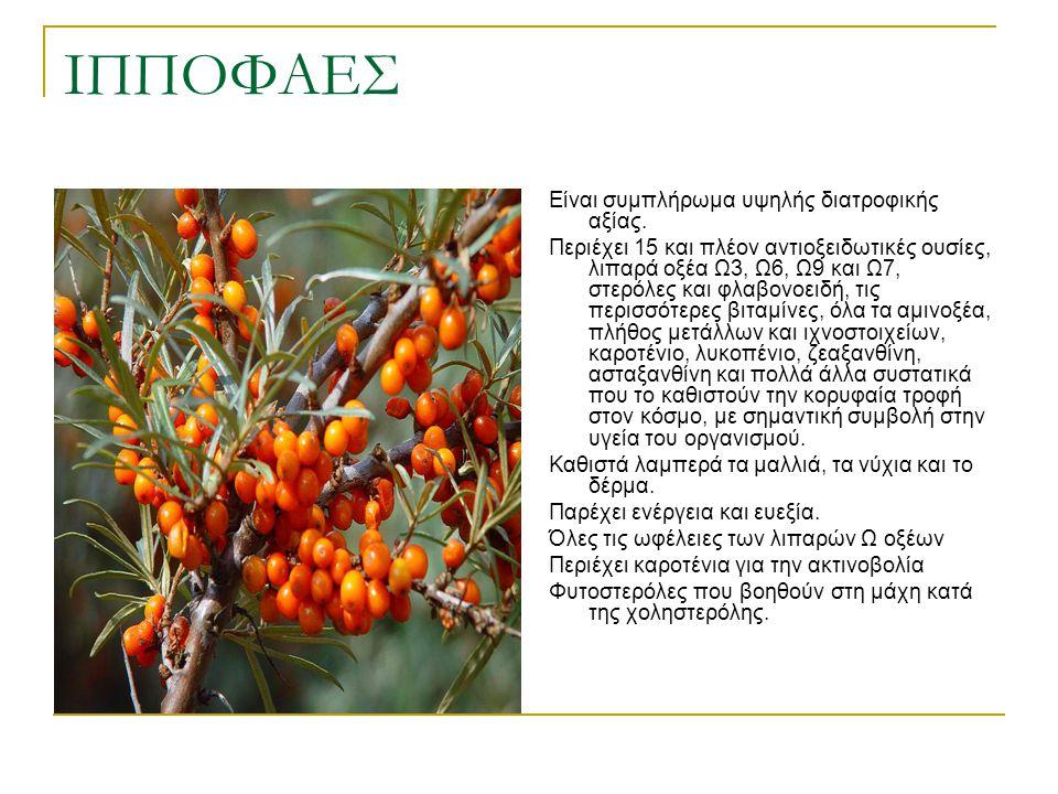 ΙΠΠΟΦΑΕΣ Είναι συμπλήρωμα υψηλής διατροφικής αξίας. Περιέχει 15 και πλέον αντιοξειδωτικές ουσίες, λιπαρά οξέα Ω3, Ω6, Ω9 και Ω7, στερόλες και φλαβονοε