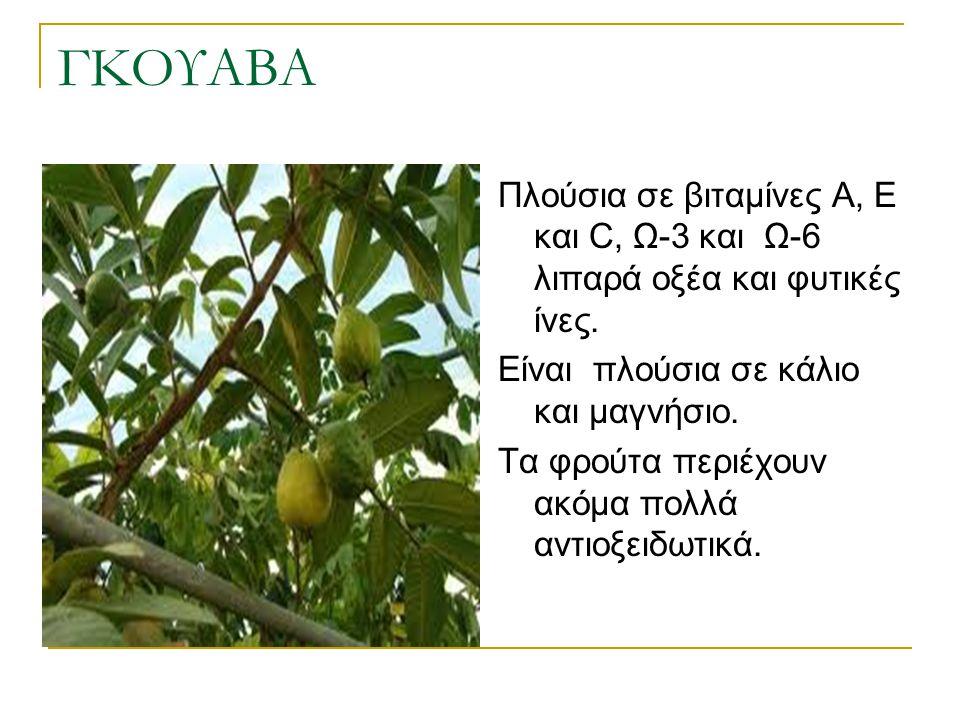 ΓΚΟΥΑΒΑ Πλούσια σε βιταμίνες Α, Ε και C, Ω-3 και Ω-6 λιπαρά οξέα και φυτικές ίνες. Είναι πλούσια σε κάλιο και μαγνήσιο. Τα φρούτα περιέχουν ακόμα πολλ
