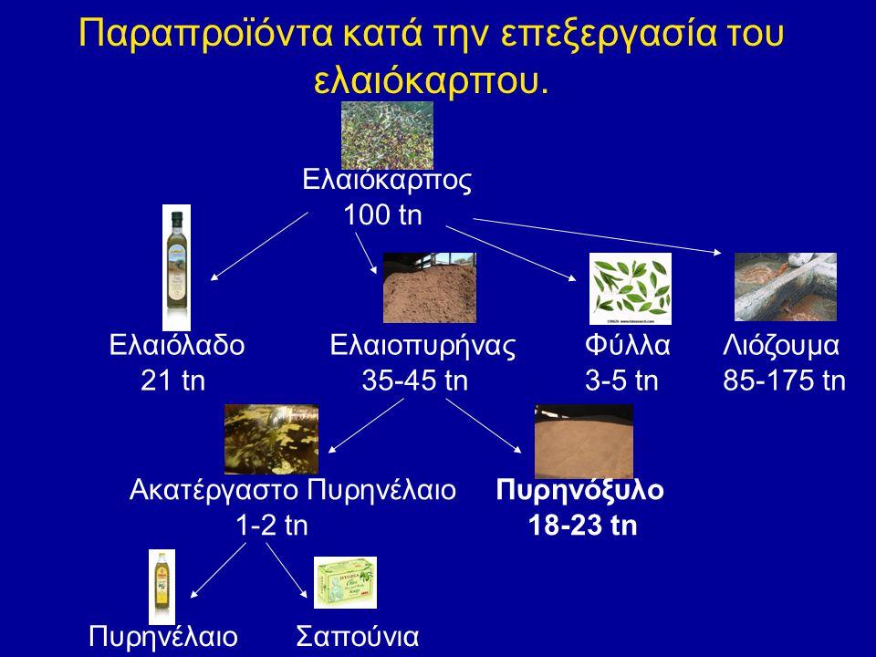 Παραπροϊόντα κατά την επεξεργασία του ελαιόκαρπου. Ελαιόκαρπος 100 tn Ελαιόλαδο 21 tn Ελαιοπυρήνας 35-45 tn Φύλλα 3-5 tn Λιόζουμα 85-175 tn Πυρηνέλαιο
