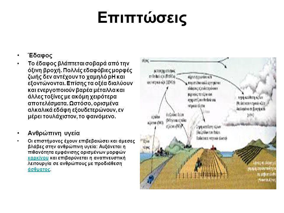 Επιπτώσεις Έδαφος Το έδαφος βλάπτεται σοβαρά από την όξινη βροχή. Πολλές εδαφόβιες μορφές ζωής δεν αντέχουν το χαμηλό pH και εξοντώνονται. Επίσης τα ο