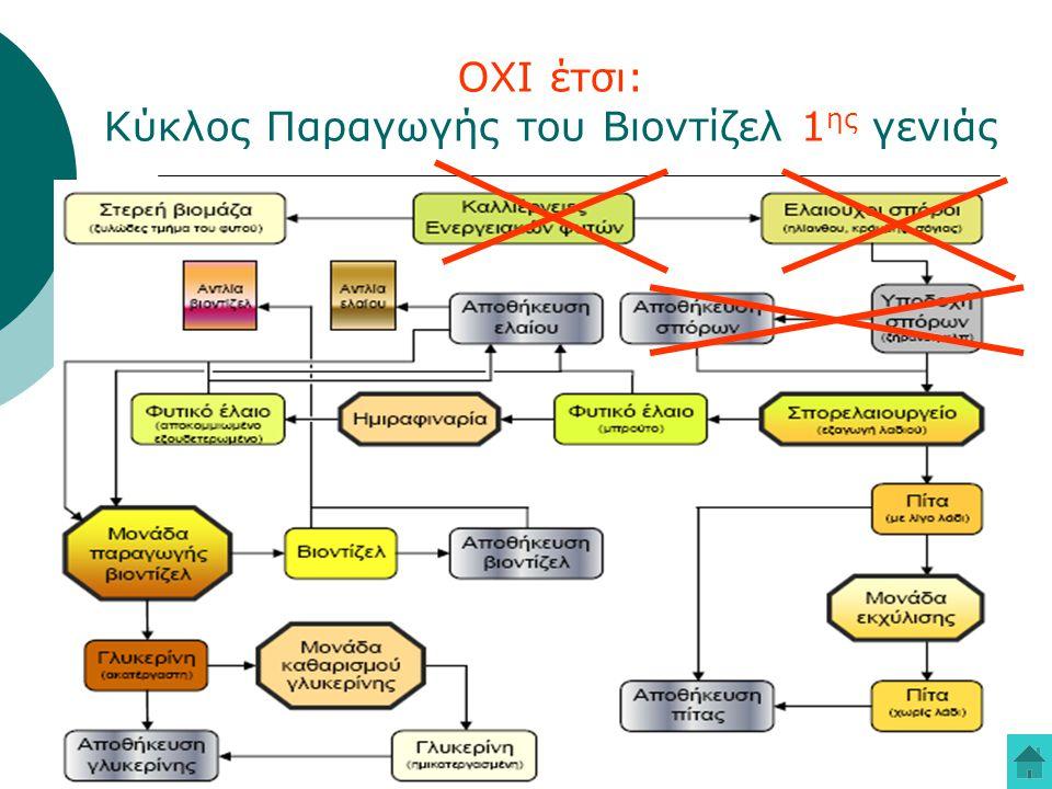 16 ΟΧΙ έτσι: Κύκλος Παραγωγής του Βιοντίζελ 1 ης γενιάς