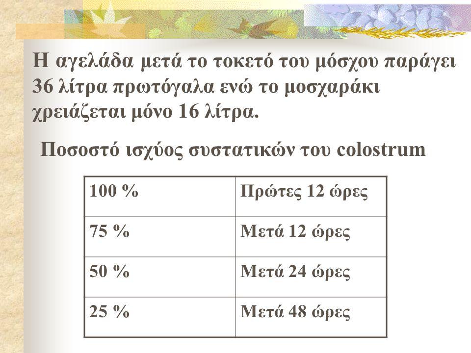 Η αγελάδα μετά το τοκετό του μόσχου παράγει 36 λίτρα πρωτόγαλα ενώ το μοσχαράκι χρειάζεται μόνο 16 λίτρα. 100 %Πρώτες 12 ώρες 75 %Μετά 12 ώρες 50 %Μετ