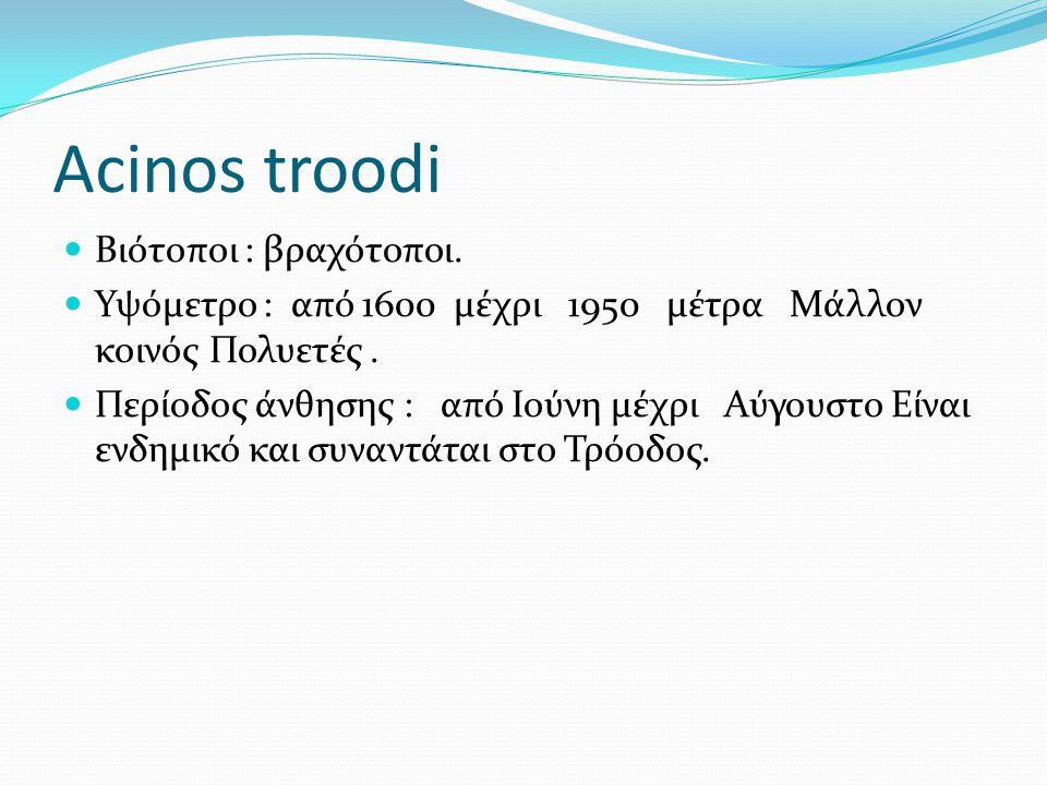 Acinos troodi Βιότοποι : βραχότοποι. Υψόμετρο : από 1600 μέχρι 1950 μέτρα Μάλλον κοινός Πολυετές. Περίοδος άνθησης : από Ιούνη μέχρι Αύγουστο Είναι εν