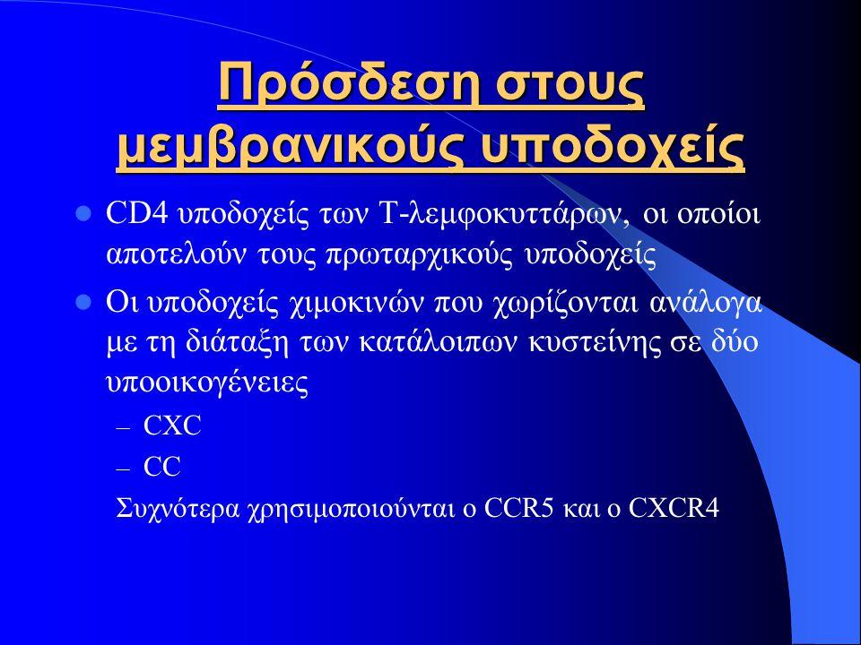 Πρόσδεση στους μεμβρανικούς υποδοχείς CD4 υποδοχείς των Τ-λεμφοκυττάρων, οι οποίοι αποτελούν τους πρωταρχικούς υποδοχείς Οι υποδοχείς χιμοκινών που χωρίζονται ανάλογα με τη διάταξη των κατάλοιπων κυστείνης σε δύο υποοικογένειες – CXC – CC Συχνότερα χρησιμοποιούνται ο CCR5 και ο CXCR4