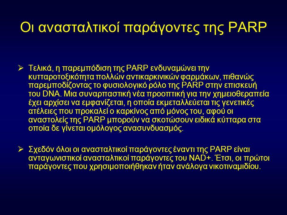 Οι ανασταλτικοί παράγοντες της PARP  Τελικά, η παρεμπόδιση της PARP ενδυναμώνει την κυτταροτοξικότητα πολλών αντικαρκινικών φαρμάκων, πιθανώς παρεμπο