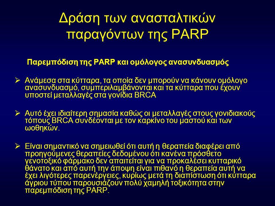 Δράση των ανασταλτικών παραγόντων της PARP Παρεμπόδιση της PARP και ομόλογος ανασυνδυασμός  Ανάμεσα στα κύτταρα, τα οποία δεν μπορούν να κάνουν ομόλο