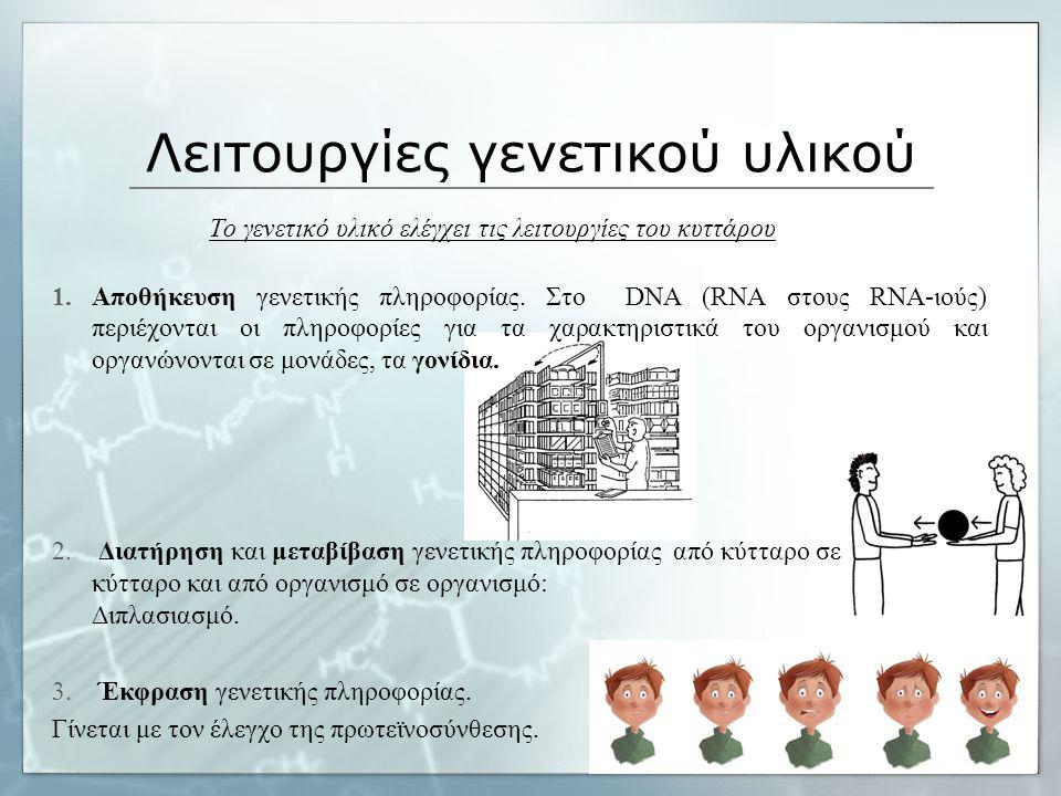 Λειτουργίες γενετικού υλικού Το γενετικό υλικό ελέγχει τις λειτουργίες του κυττάρου 1.Αποθήκευση γενετικής πληροφορίας. Στο DNA (RNA στους RNA-ιούς) π