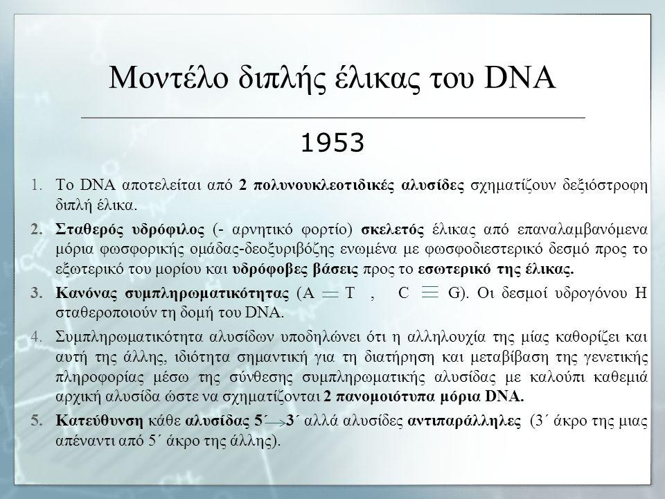 Μοντέλο διπλής έλικας του DNA 1953 1.Το DNA αποτελείται από 2 πολυνουκλεοτιδικές αλυσίδες σχηματίζουν δεξιόστροφη διπλή έλικα. 2.Σταθερός υδρόφιλος (-