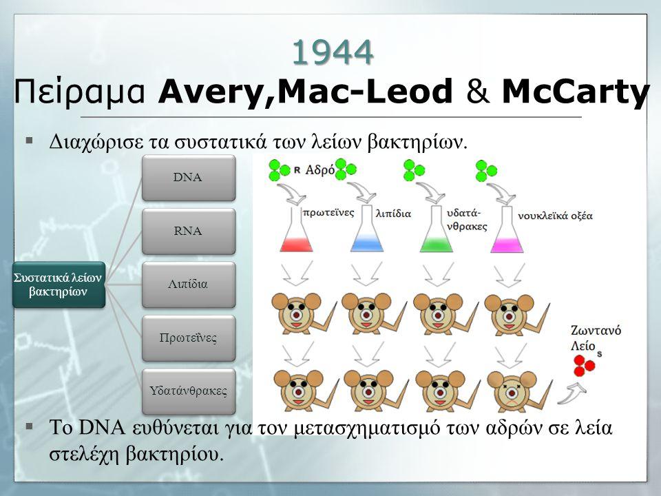 1944 1944 Πείραμα Avery,Mac-Leod & McCarty  Διαχώρισε τα συστατικά των λείων βακτηρίων.  Το DNA ευθύνεται για τον μετασχηματισμό των αδρών σε λεία σ