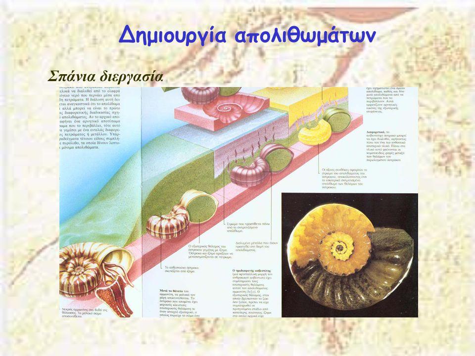 Δημιουργία απολιθωμάτων Σπάνια διεργασία
