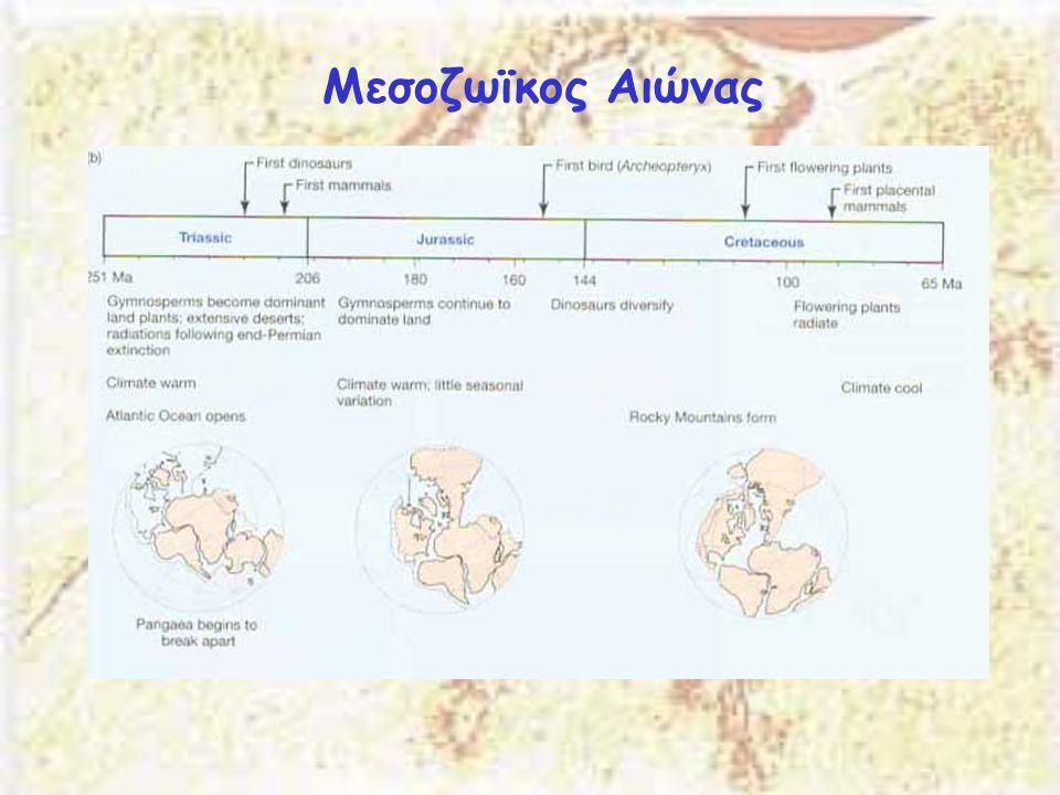 Μεσοζωϊκος Αιώνας
