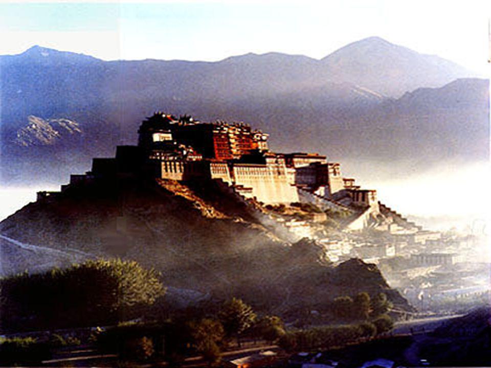 Διαφορετικοί τύποι ναών, όπως και διαφορετικές είναι οι διάφορες μορφές του Βούδα