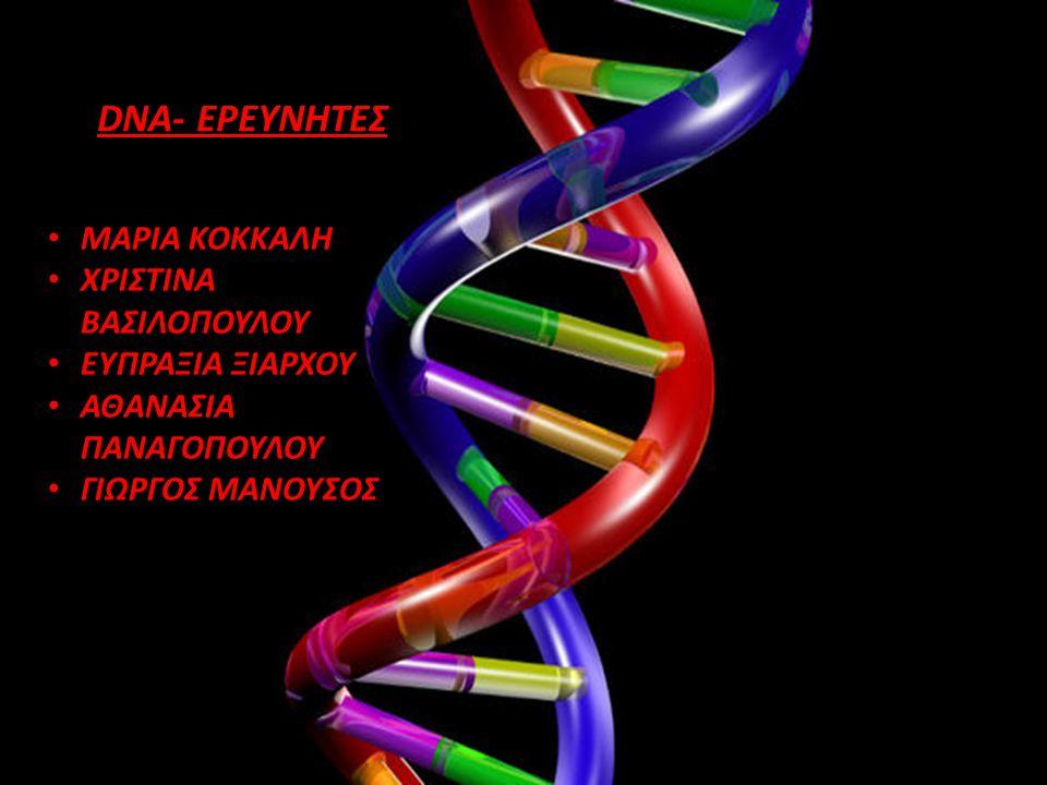 DNA- ΕΡΕΥΝΗΤΕΣ ΜΑΡΙΑ ΚΟΚΚΑΛΗ ΧΡΙΣΤΙΝΑ ΒΑΣΙΛΟΠΟΥΛΟΥ ΕΥΠΡΑΞΙΑ ΞΙΑΡΧΟΥ ΑΘΑΝΑΣΙΑ ΠΑΝΑΓΟΠΟΥΛΟΥ ΓΙΩΡΓΟΣ ΜΑΝΟΥΣΟΣ