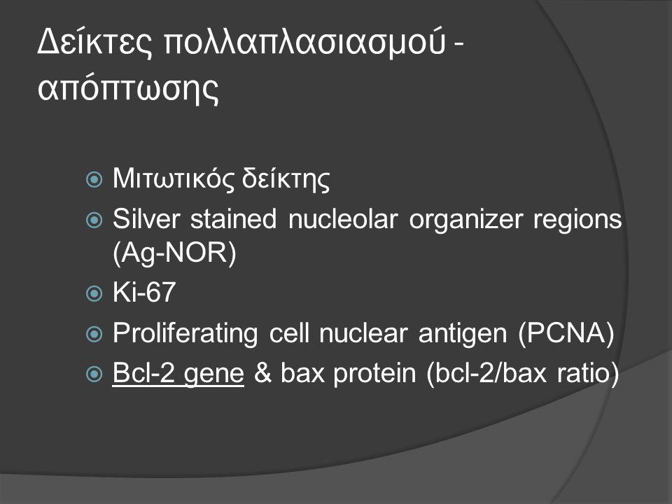 Δείκτες πολλαπλασιασμού - απόπτωσης  Μιτωτικός δείκτης  Silver stained nucleolar organizer regions (Ag-NOR)  Ki-67  Proliferating cell nuclear antigen (PCNA)  Bcl-2 gene & bax protein (bcl-2/bax ratio)