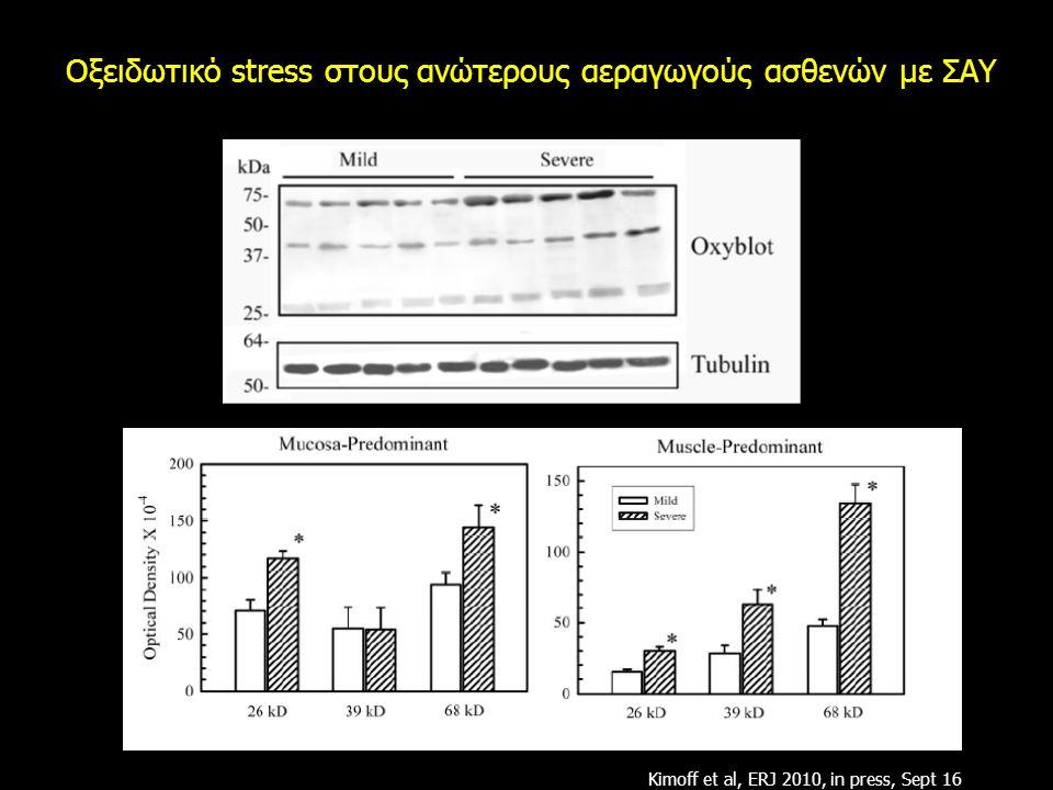 Οξειδωτικό stress στους ανώτερους αεραγωγούς ασθενών με ΣΑΥ Kimoff et al, ERJ 2010, in press, Sept 16