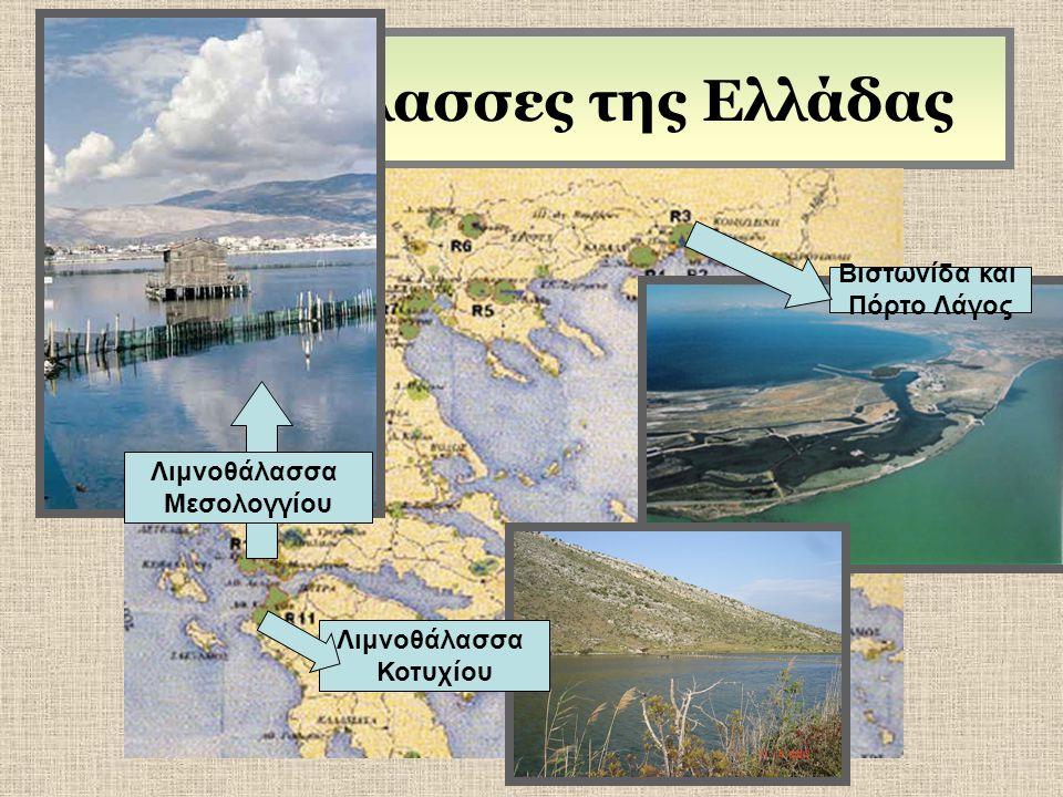 Λιμνοθάλασσες της Ελλάδας Λιμνοθάλασσα Μεσολογγίου Βιστωνίδα και Πόρτο Λάγος Λιμνοθάλασσα Κοτυχίου