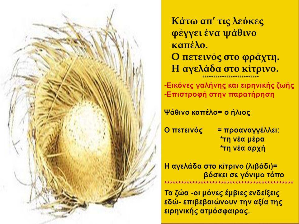 Κάτω απ' τις λεύκες φέγγει ένα ψάθινο καπέλο. Ο πετεινός στο φράχτη. Η αγελάδα στο κίτρινο. ************************** -Εικόνες γαλήνης και ειρηνικής