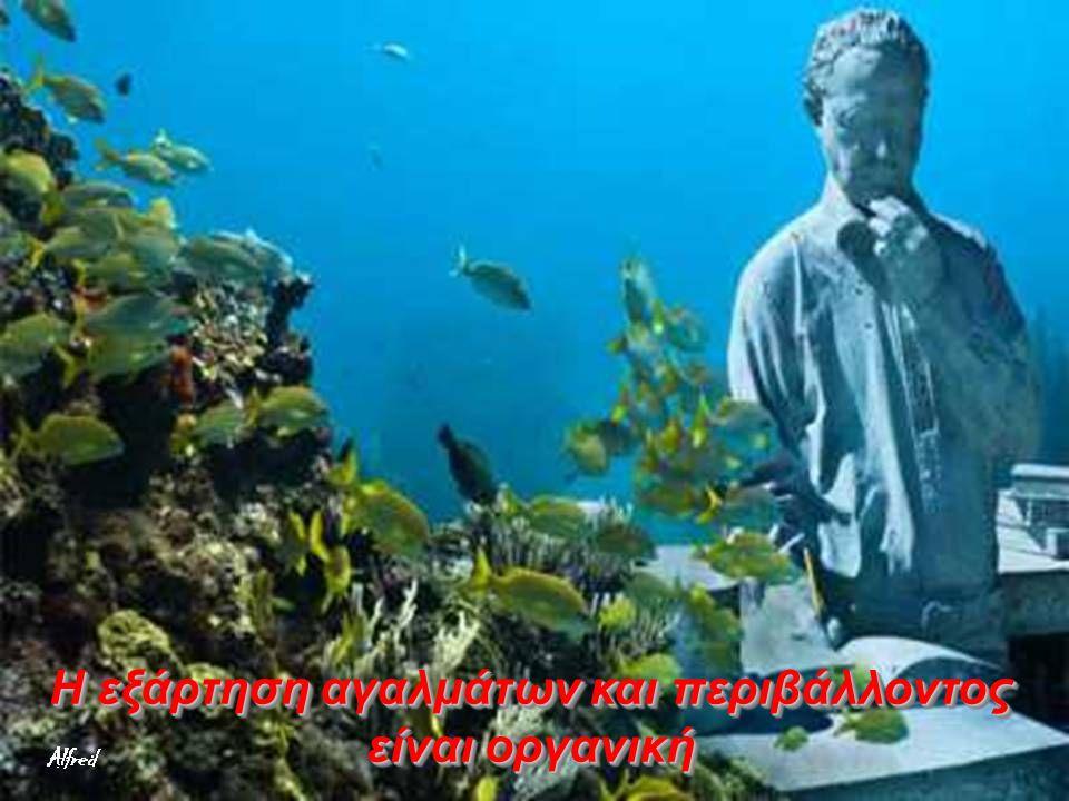 Τα κοράλλια θα επωφεληθούν από τη χημική σύνθεση των τσιμεντένιων γλυπτών για να τα αποικίσουν και να αναπαραχθούν … καλύπτοντας τα έτσι - με την πάρο