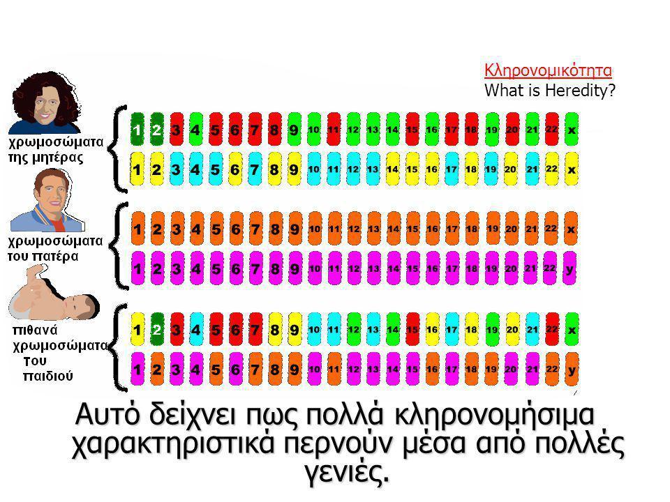 Αυτό δείχνει πως πολλά κληρονομήσιμα χαρακτηριστικά περνούν μέσα από πολλές γενιές. Κληρονομικότητα What is Heredity?